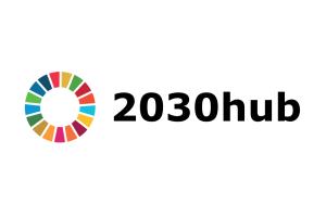 2030hub logo generic