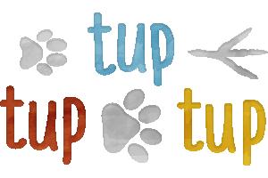 Fundacja Tup Tup Tup