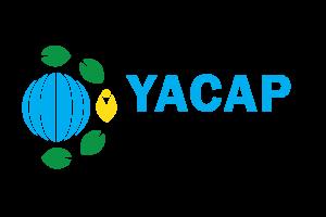 Copy of YACAPLOGO 04